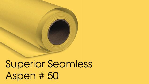 Superior Seamless Background Paper - Aspen #50 (2.72M)